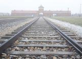 Against all odds:  Male Holocaust Survivors Have a Longer Life-Expectancy