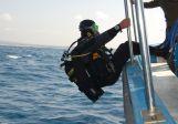 האוניברסיטה תקים את מרכז הלמסלי לחקר הים התיכון