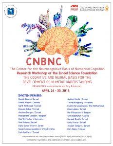 Read more about the article הבסיס הנוירולוגי והקוגנטיבי של התפתחות ההבנה הנומרית