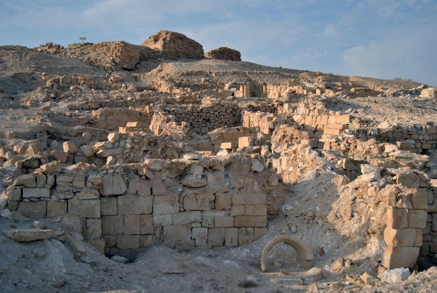 Read more about the article גללי הצאן מספרים את סיפור השקיעה של ערי הנגב הביזנטיות